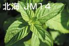 北海JM14