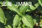 北海JMM3